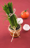 Green onion in pot with tomato — Stock Photo