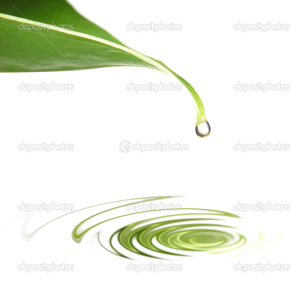 A drop of water hanging on leaf. — Stock Photo #2060967
