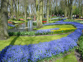 Scenic garden with spring flowers — Stock Photo