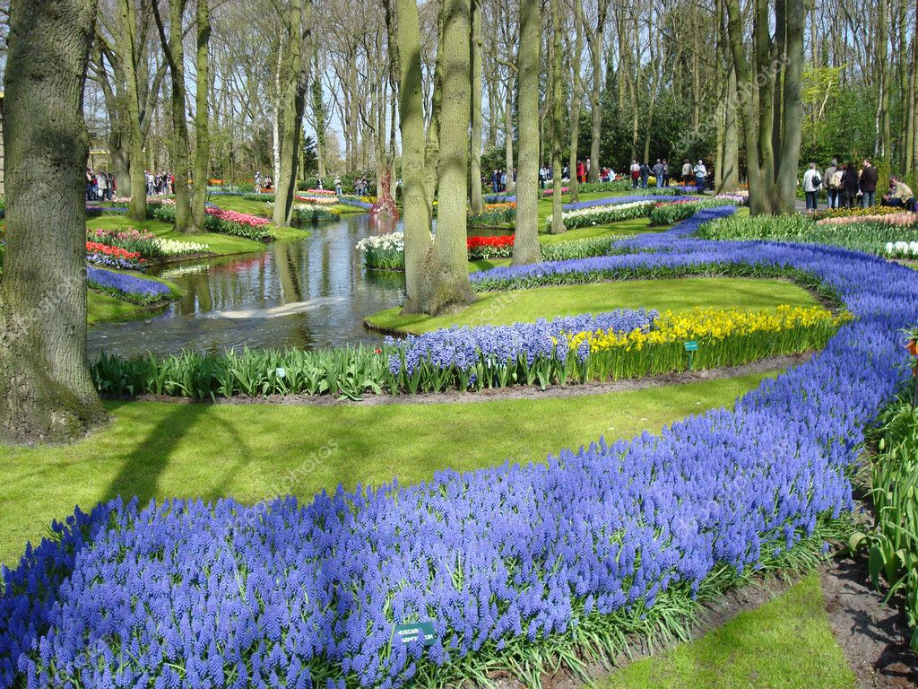 Scenic Garden With Spring Flowers Stock Photo Marinad