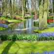 Stock Photo: Scenic garden with spring flowers