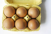 Egg box with six eggs — Stock Photo