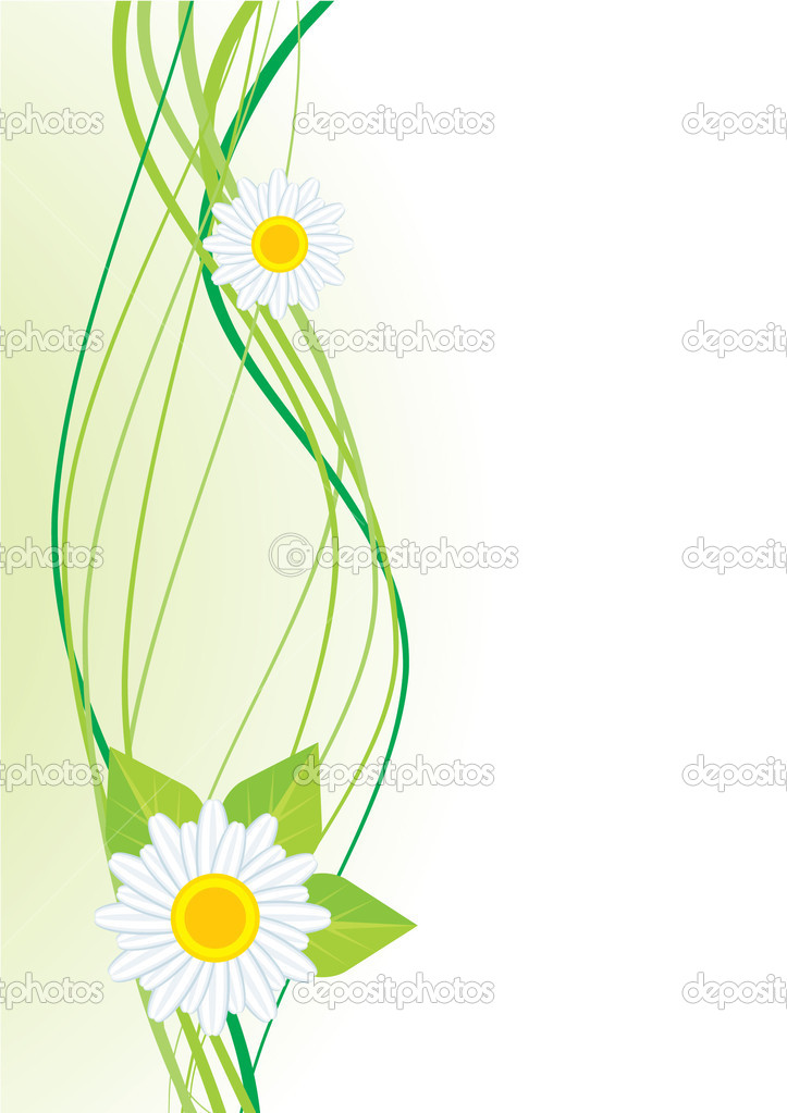 Daisy decorative curve  Stock Photo #2226663