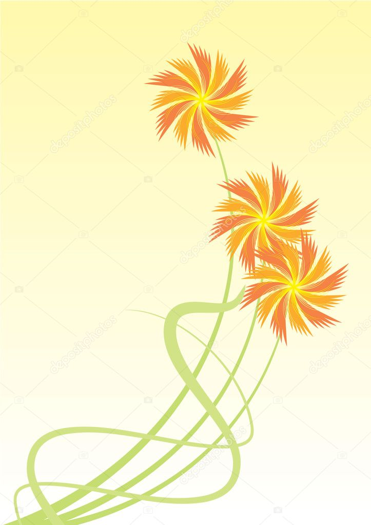 Orange flowers — Stock Photo #2226711