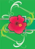 Hibiscus green border illustration — Stock Photo