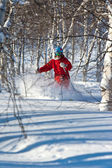 Freeride in Siberia — Stock Photo