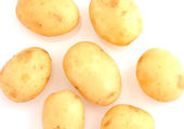 Potato isolated — Stock Photo