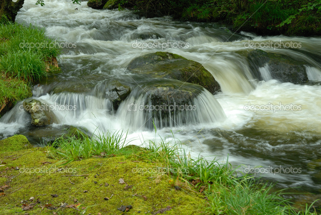 Fast flowing stream — Stock Photo © warren0909 #2086681
