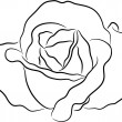 Rose contour - Stock Vector