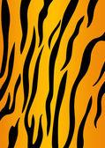 Tiger skin — Stock Vector