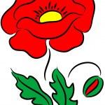 Poppy Flower — Stock Vector