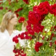 Woman in garden of roses — Stock Photo