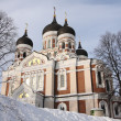 Stock Photo: Alexandr Nevsky Cathedral