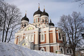 Alexandr Nevsky Cathedral — Stock Photo