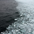 Arctic sea ice - Stock Photo