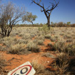 ������, ������: Australian Outback Speed Limit