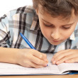 Schoolboy doing homework — Stockfoto