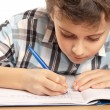 Schoolboy doing homework — Stock Photo #2007899