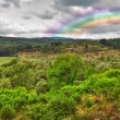 Landscape with rainbow after rain - Stock Photo