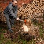 Lumberjack — Stock Photo #2009878