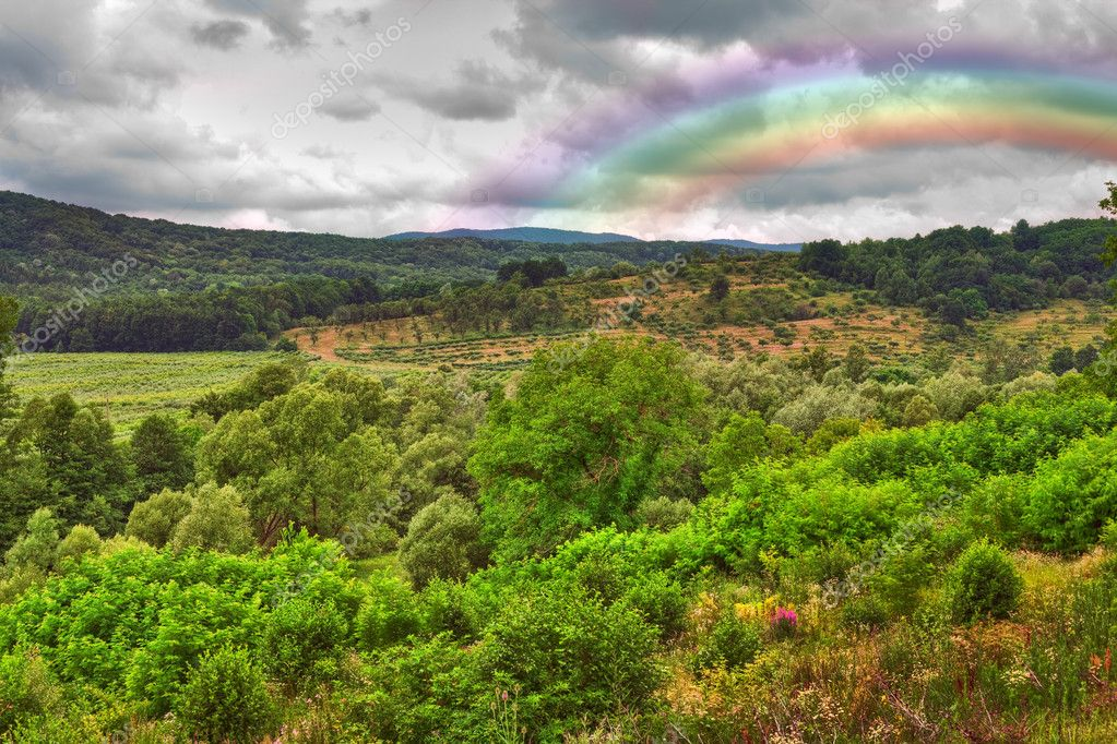Landscape with forests and hills after a rainy day, with a colorful rainbow  Stock Photo #2007987