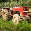 Red tractor — Stock Photo #2010877