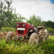 Red tractor — Stock Photo #2010879
