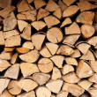 Stack of logs — Stock Photo #2012391