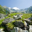 Stock Photo: Landscape in Fagaras mountains, Romania