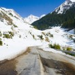 Road in mountains — Stock Photo #2213650