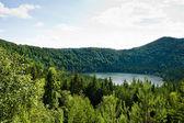 Saint Ana volcanic lake in Romania — Stock Photo