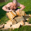 Stock Photo: Splitting wood