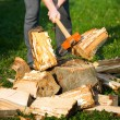 Wood splitting — Stock Photo