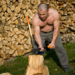 Splitting wood - Foto Stock