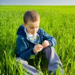 Stock Photo: Cutea kid in a wheat field