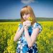 Blonde in a rape field — Stock Photo #2244021