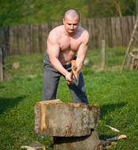 Splitting wood — Stock Photo