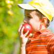 Boy eating apple — Stock Photo