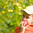 Boy eating apple — Stock Photo #2250112