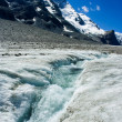 glacier du Grossglockner — Photo