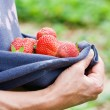 Woman holding strawberries — Stock Photo #2254408