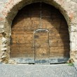 Antique door - Photo
