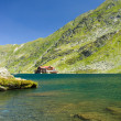 Stock Photo: BaleLake, Romania