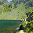 Balea Lake, Romania — Stock Photo #2254908