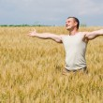 Man in wheat field — Stock Photo