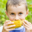 Boy eating corn — Stock Photo