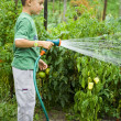 Little gardener at work - Foto Stock