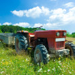 Stock Photo: Tractor in flower field