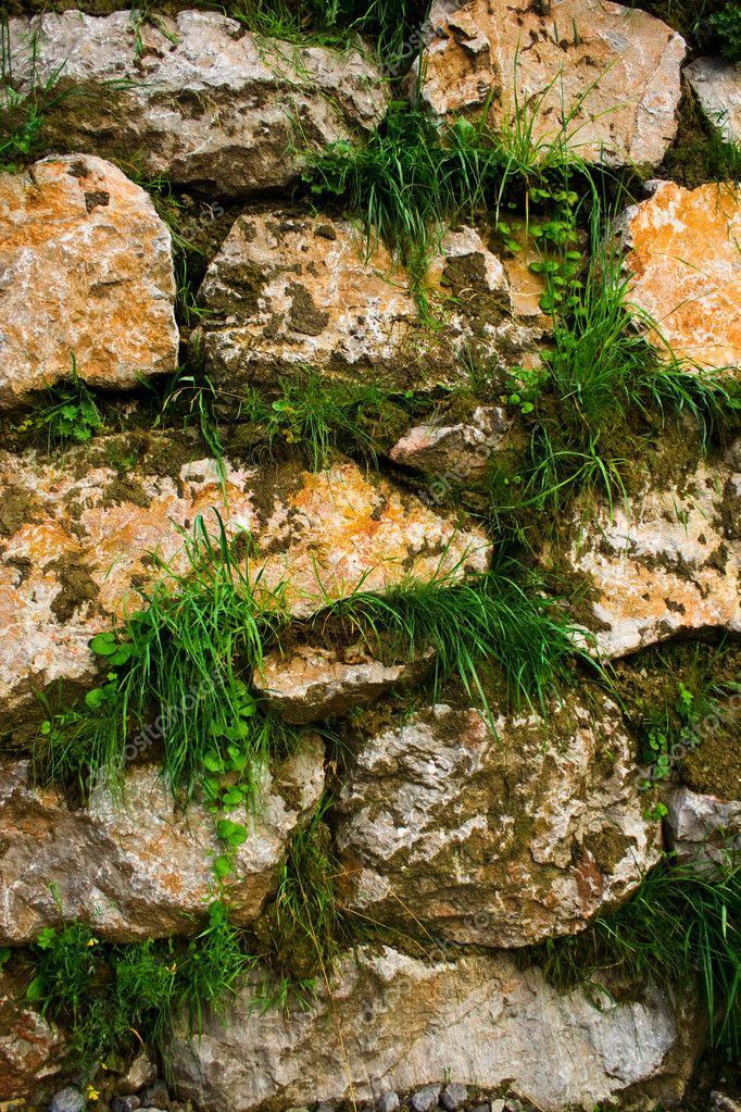 Wall of stones with grass growing between them — Stock Photo #2255887