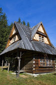 Old traditional house in Zakopane — Stock Photo